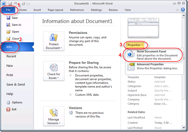 Open the Document Information Panel in Microsoft Word